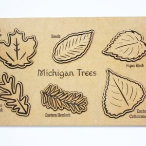 Sensory Box Family Wooden Michigan Tree Leaf Puzzle