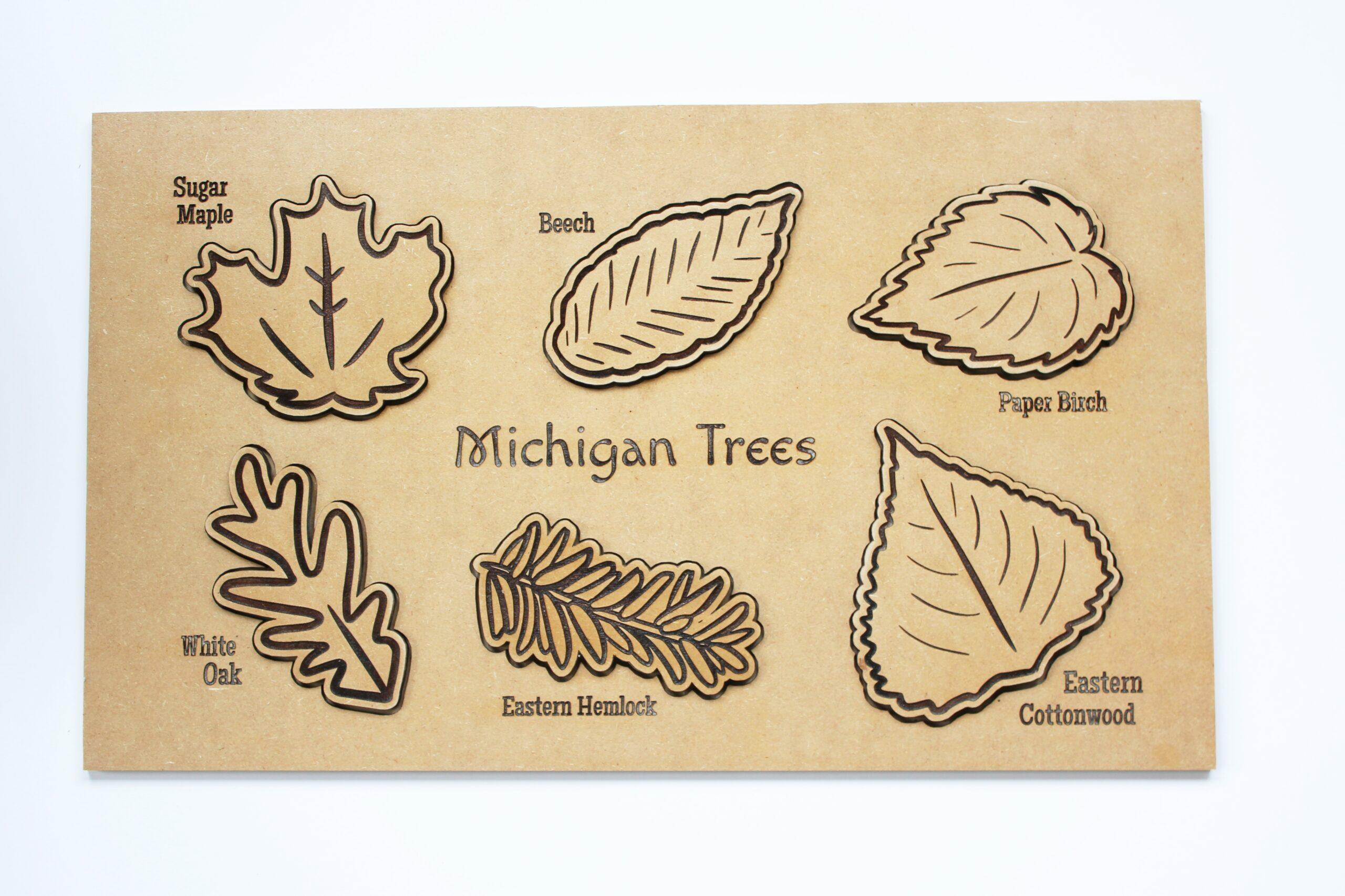 Sensory Box Family Wooden Michigan Tree Leaf Puzzle