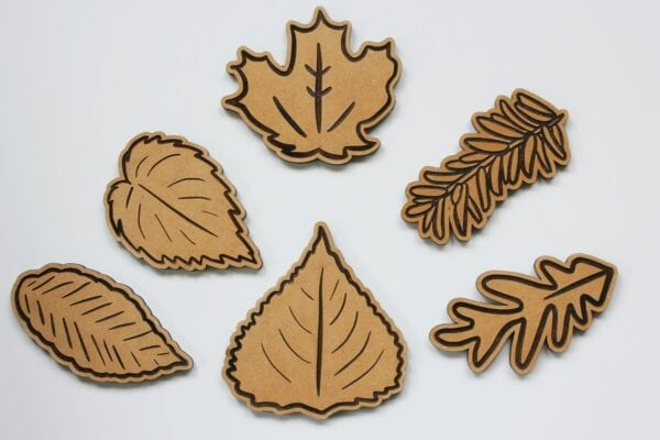 Sensory Box Family Wooden Michigan Tree Leaf Puzzle Pieces