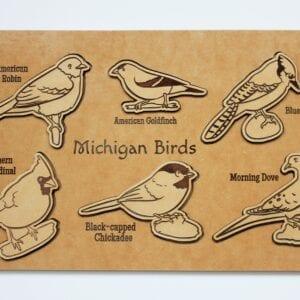 Sensory Box Family Wooden Bird Puzzle Michigan Birds